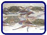 Ocean Exports - Products - Crustaceans - Prawns, Shrimp, Crabs, Lobsters, Slipper Lobsters, Moreton Bay Bugs